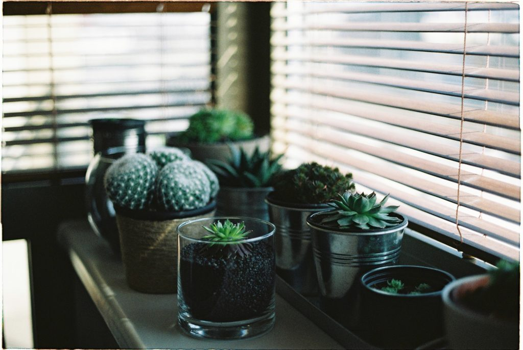 The Accessibility and Convenience of Motorized Blinds